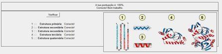 estrutura proteina