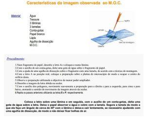 Caracteristicas da imagem MOC