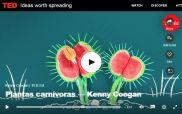 Tedx plantas carnívoras